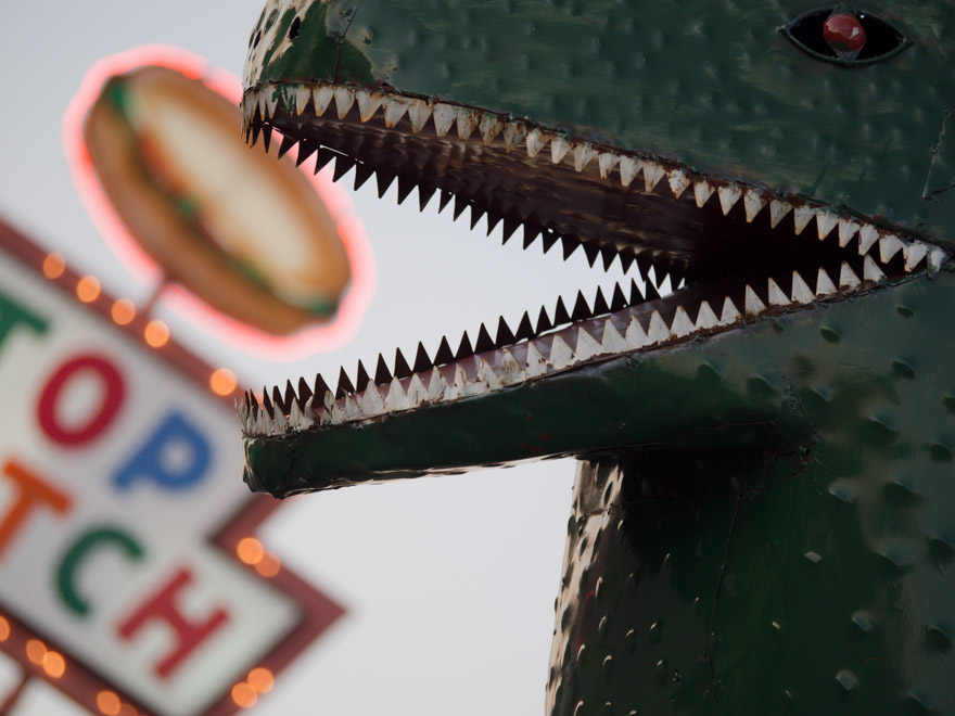 Dinosaur eating food