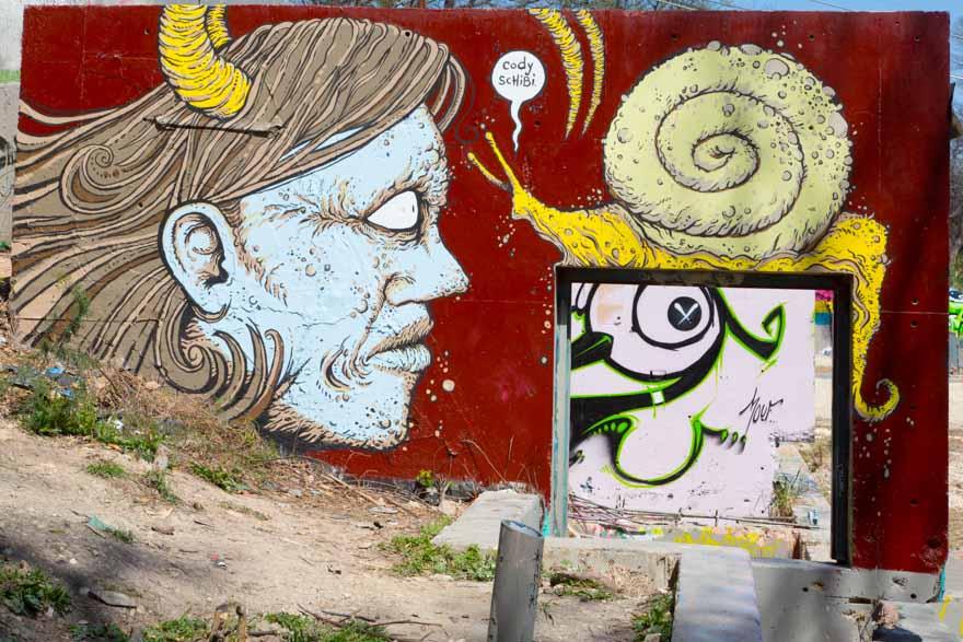 street_art_austin_tx (2)