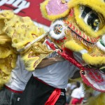 Lion and Dragon Dancing for Chinese New Year Stock Photos