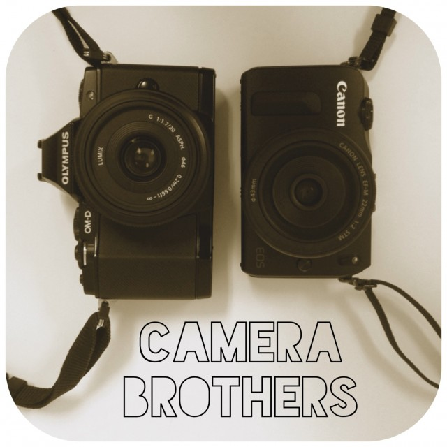 OMD EM5 vs Canon EOS M size