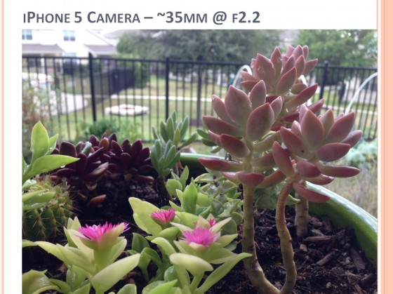 Camera Buying Comparison Photo - iPhone